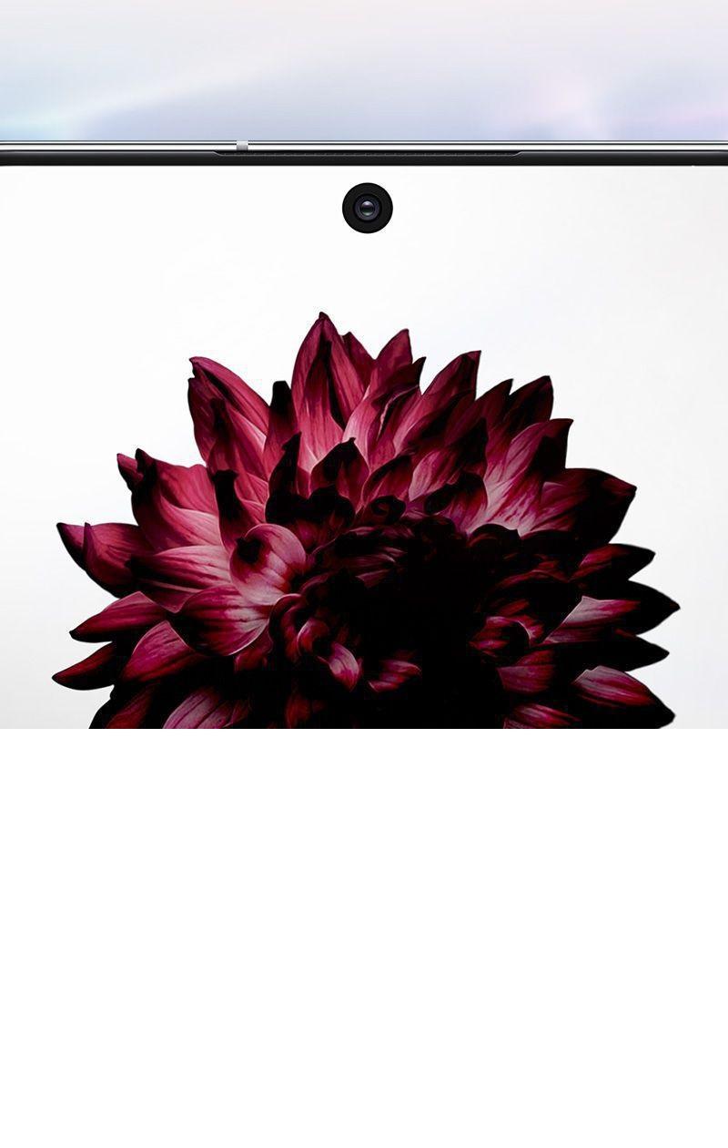 نمایی نزدیک از صفحه نمایش سینمایی Infinity-O موجود روی Galaxy Note10 plus در حالیکه تصویر یه گل روی صفحه نمایش دیده میشود.